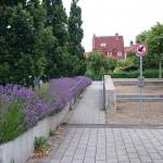 Cathrinplatz